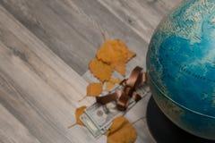 春天,季节10月, 11月,与金钱,美国的秋天 免版税库存图片