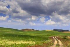 春天 在普利亚和巴斯利卡塔之间 与乡下公路的多小山风景通过麦田末端鸦片由云彩控制了 免版税图库摄影