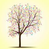 春天(夏天)结构树 免版税库存图片