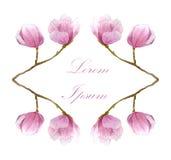 春天水彩卡片 季节设计的手拉的木兰花 库存图片