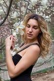 春天 您背景设计开花的木兰 免版税图库摄影