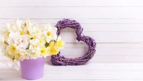 春天水仙或黄水仙在紫罗兰色罐和得体开花 库存图片