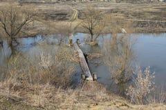 春天洪水淹没了老桥梁 免版税库存图片