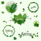 春天绿色徽章 免版税库存图片
