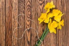 春天黄色黄水仙花和空标识符在褐色绘了木板条 选择聚焦 安置文本 库存图片