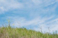 春天绿草小山和蓝色云彩天空 图库摄影