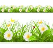 春天绿草无缝的边界 皇族释放例证