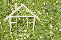 春天绿草的木家 库存照片