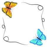 春天蝴蝶和冬天蝴蝶 库存照片