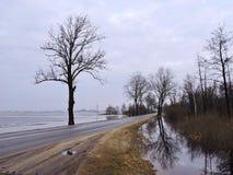 春天洪水,立陶宛 免版税库存照片
