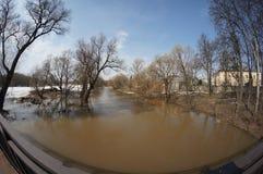 春天洪水 库存图片