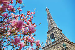 巴黎春天 免版税库存照片