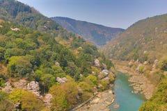 春天Arashiyama的图象  库存照片