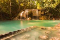 春季瀑布在深森林密林 免版税图库摄影