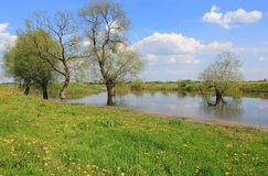 春季的河 免版税图库摄影
