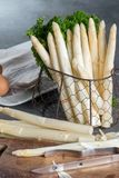 春季,荷兰语,德国白色芦笋新的收获  库存图片