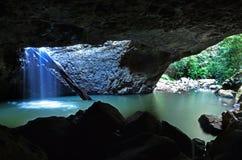 春溪国家公园-昆士兰澳大利亚 图库摄影