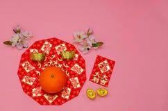 春节与猪面孔的节日背景 图库摄影