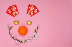 春节与猪面孔的节日背景 库存图片