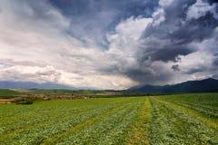 春雨和风暴在山 斯洛伐克绿色春天小山  免版税库存图片
