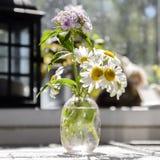 春黄菊在一个精美花瓶的庭院花 免版税库存图片