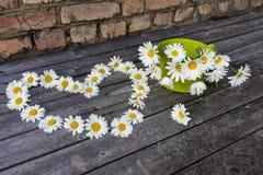 春黄菊心脏和花束开花木表面上 免版税库存照片
