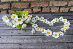 春黄菊心脏和花束开花木表面上 免版税图库摄影