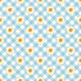 春黄菊无缝的样式 在蓝色方格花布检查背景的雏菊 向量例证