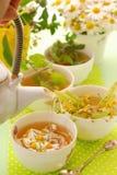 春黄菊杯子倾吐的茶 库存照片