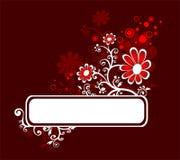 春黄菊框架 图库摄影
