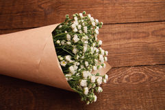 春黄菊花束  库存照片
