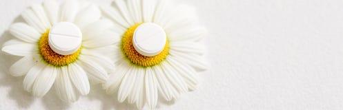 春黄菊花,同种疗法药物 在黄色花粉的白色片剂 库存图片