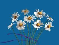 春黄菊 向量例证