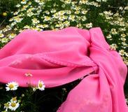 春黄菊和桃红色布料 免版税图库摄影