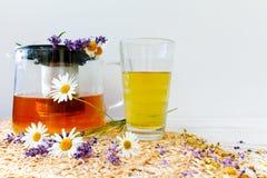 春黄菊和淡紫色清凉茶 库存照片