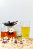春黄菊和淡紫色清凉茶 图库摄影