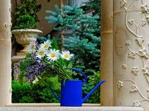 春黄菊束在公园 免版税库存照片
