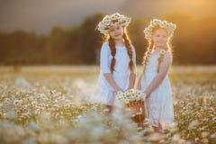 春黄菊的两个俏丽的儿童女孩调遣与花篮子  库存图片