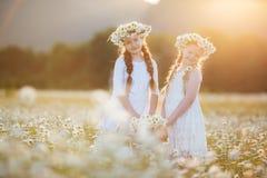 春黄菊的两个逗人喜爱的儿童女孩调遣与花篮子  库存照片