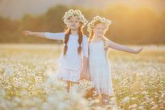 春黄菊的两个逗人喜爱的儿童女孩调遣与花篮子  免版税库存照片