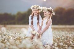 春黄菊的两个逗人喜爱的儿童女孩调遣与花篮子  免版税图库摄影