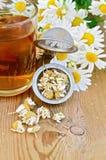 从春黄菊的清凉茶干燥在有杯子的一台过滤器 免版税图库摄影