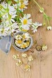 从春黄菊的清凉茶干燥在过滤器 库存照片