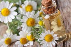 春黄菊的芬芳油在水平玻璃瓶的宏指令的 库存图片