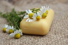 春黄菊自然肥皂和花  库存照片