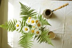 春黄菊花束  库存图片