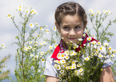 春黄菊领域的女孩 库存照片