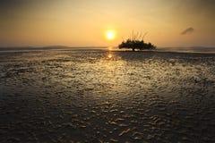 树和日落剪影在沈默海滩的 免版税库存照片