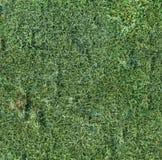 满是卷结的绿色背景 库存照片