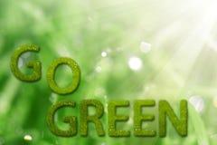 是在自然本底的绿色标志 免版税库存照片
